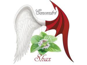 Shax concentré - Ange ou Démon