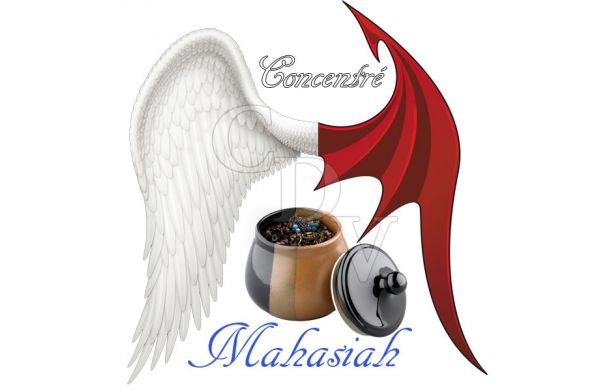 Mahasiah concentré - Ange ou Démon